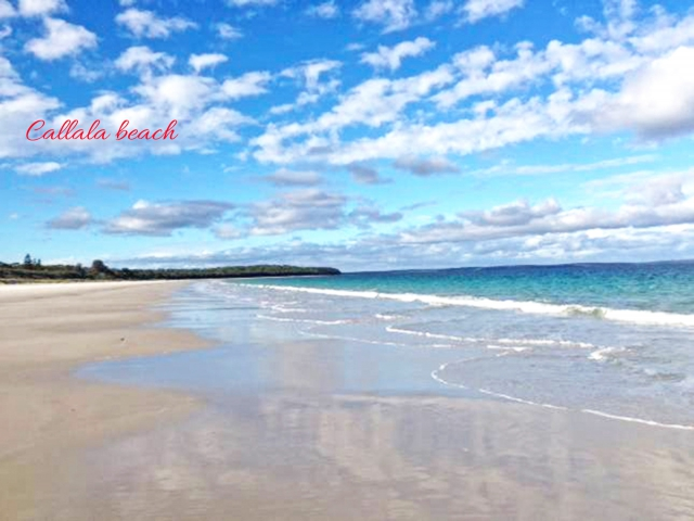 Pet friendly accommodation in Callala Beach South Coast - Jervis Bay NSW