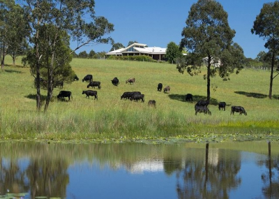 Spacious 6 bed pet friendly holiday home, sleeps 10 in Wang Wauk NSW
