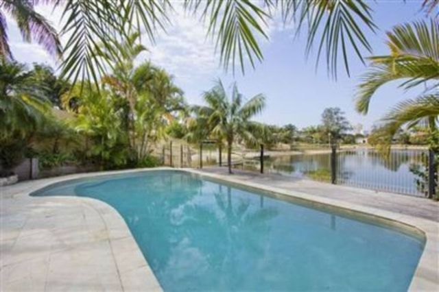 Pet friendly accommodation in Broadbeach Waters Gold Coast QLD