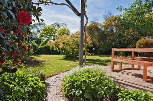 Pet friendly accommodation in Orange Explorer Country NSW